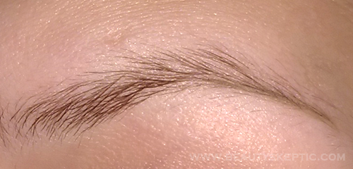 Anastasia Dipbrow Tutorial - Step 1 - Tail