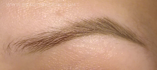 Anastasia Dipbrow Tutorial - Step 6 - Fill Arch