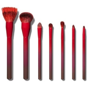 Sonia Kashuk Ombre Obsessed Brush Set